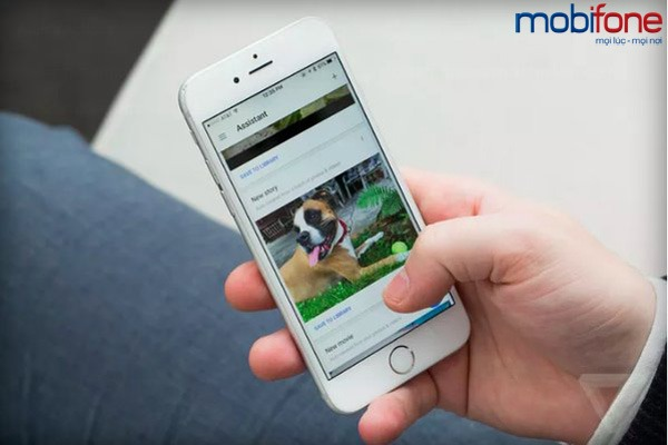 Thế giới 24h của Mobifone